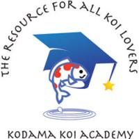 Kodama Koi