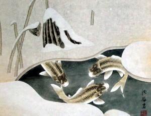 icy-fish