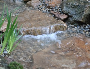 Rocks and gravel in pond design full service aquatics for Rock ponds designs