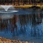Water Quality Improvement For Natural Ponds In New Jersey