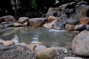 koi pond water garden Basking Ridge NJ 07920 Somerset County