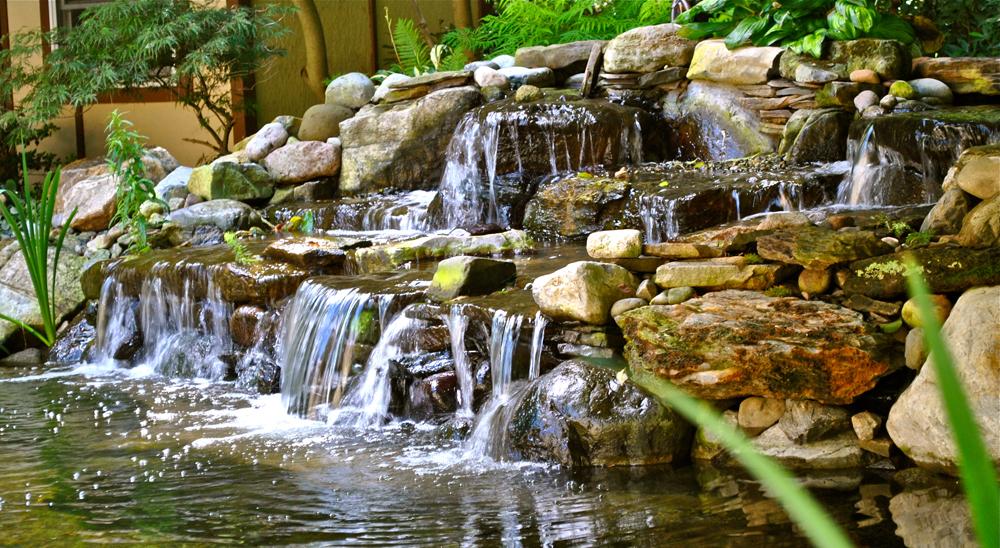 Backyard Koi Ponds Amp Water Garden Installation In