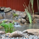 koi pond water garden services installation Summit NJ 07901 Union County