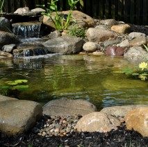 water garden koi pond installer madison, new jersey 07940 Morris county NJ