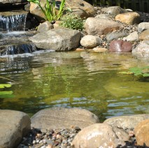 water garden installer madison, nj 07940 Morris County NJ