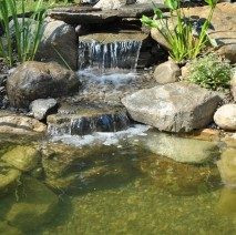 water garden installation service madison, nj 07940 Morris County, NJ