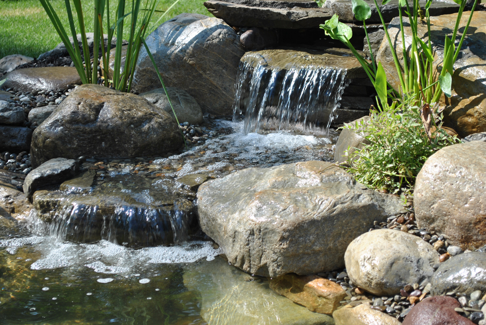 water garden koi pond madison, nj 07940 Morris county, NJ