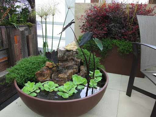 ... Patio Container Water Garden Pond New Jersey