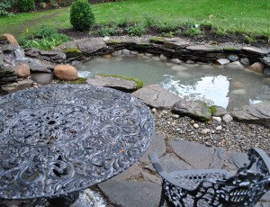 Feeding your pond fish full service aquatics for Koi pond maintenance near me