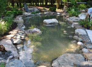Water garden installer construction Whitehouse Station, NJ Hunterdon County 08889