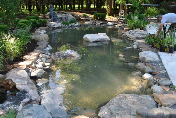World class water garden koi pond designs for new jersey 08889 for Garden pond design and construction