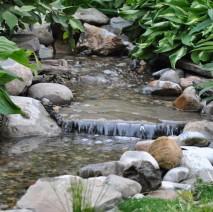 Chatham NJ water garden install 07928 Morris county NJ