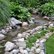 koi pond water garden install Chatham NJ 07928 Morris County