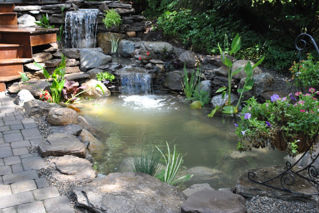 Pond Repair Services New Jersey