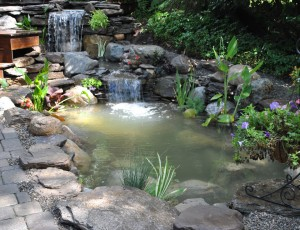 New jersey koi pond water garden repair services made easy for Fish pond repair