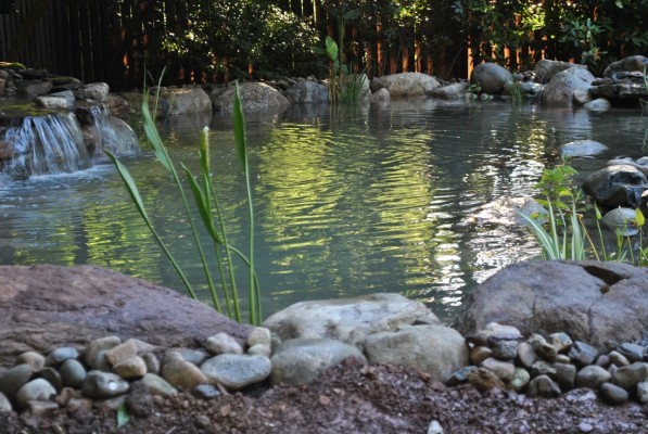 Water garden koi pond installation hillsborough nj 08844 for Fish pond installation