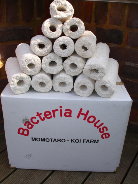 Bakki shower filters are highly effective filters for koi for Best homemade pond filter media