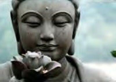 The amazing lotus flower full service aquatics loveyourpond mightylinksfo