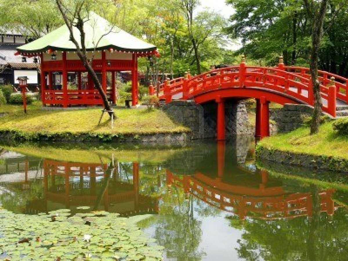 Creating a themed pond is an easy form of self expression for Koi pond supply of japan