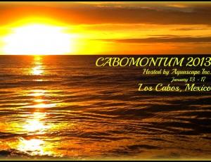 cabomonium 2013