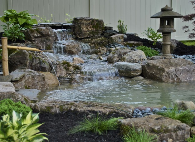 New jersey pond cleaning water garden design service by for Koi pond builders near me