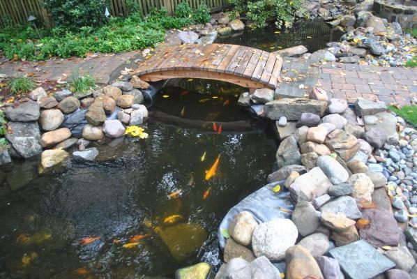 water garden mountain lakes NJ