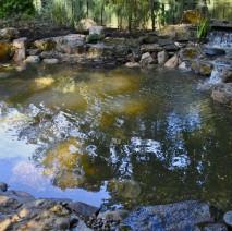 koi pond installation Plainfield NJ