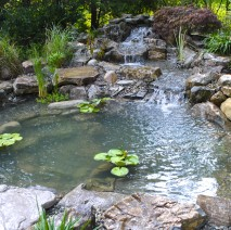 koi pond installation Westfield NJ