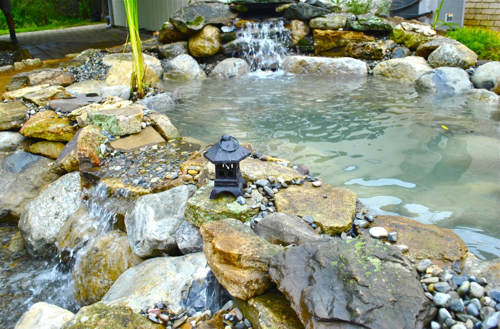koi pond installation Long Branch NJ
