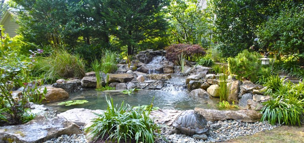 koi pond installation Westfield NJ
