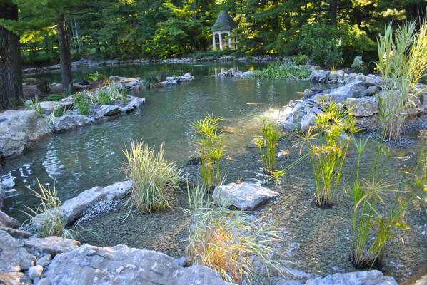 Water Garden Koi Pond Installation Project In Princeton New Jersey