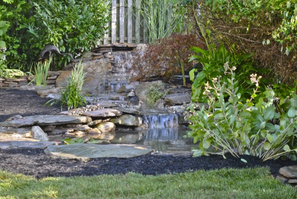 Water garden koi pond installation project in summit new for Garden pond installers