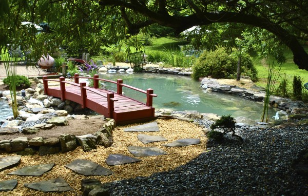 Water garden koi pond installation project in long branch for Garden pond installers