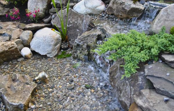water garden South Orange NJ