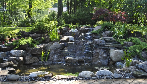 water garden South Orange NJ