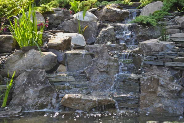 Splendid Water Garden Koi Pond Installation Project In South Orange New Jersey With Goodlooking Water Garden South Orange Nj With Divine Garden Sheds Uk Also Chiswick Garden Centre In Addition Garden Pond Liner And Watch The Garden Of Words As Well As Terrace Gardens Additionally Tring Garden Centre From Fullserviceaquaticscom With   Goodlooking Water Garden Koi Pond Installation Project In South Orange New Jersey With Divine Water Garden South Orange Nj And Splendid Garden Sheds Uk Also Chiswick Garden Centre In Addition Garden Pond Liner From Fullserviceaquaticscom