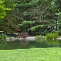 water garden Morristown NJ