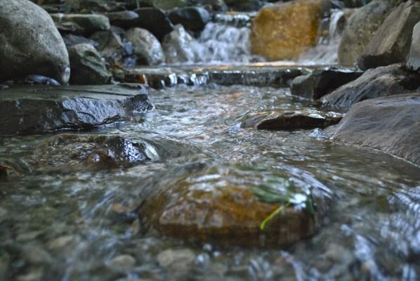 water garden installation Madison NJ