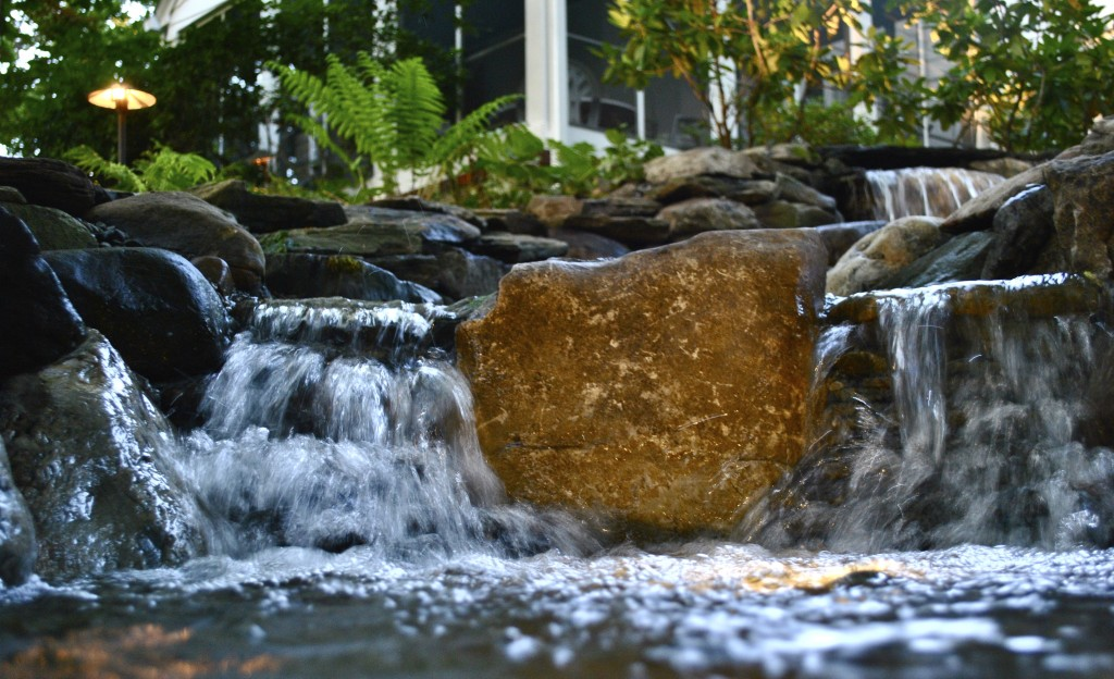 water garden installation Madison NJ