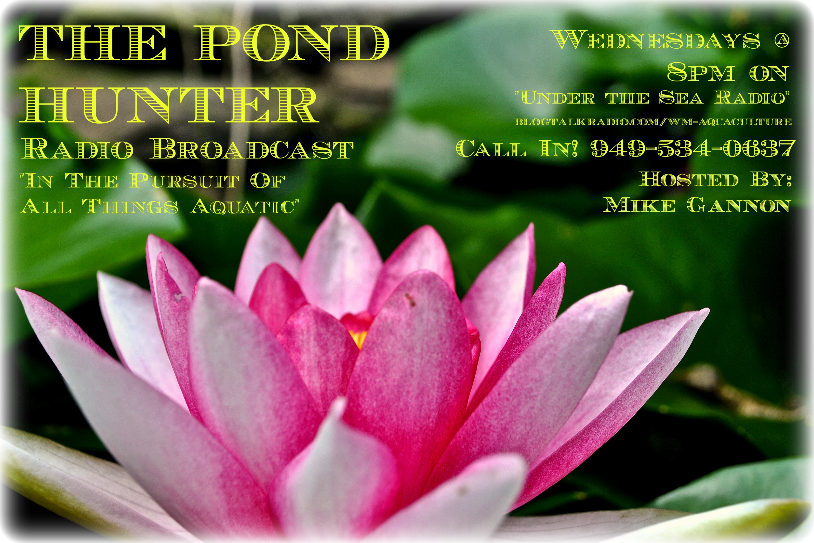 NEW! POND HUNTER RADIO BROADCAST ON PONDS AND WATER GARDENS