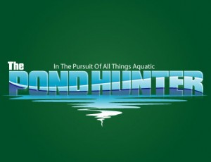 Pond predators and how to deter them on The Pond Hunter Radio!