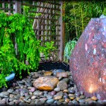 New Jersey Water Garden Installation