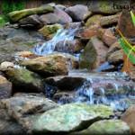 Spring Water Running Down Pond Rocks in New Jersey