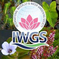 IWGSblog
