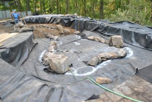 Swimming pool converion into a koi pond project for Pool to koi pond conversion