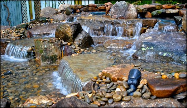 Swimming pool converion into a koi pond project for Koi pond next to swimming pool