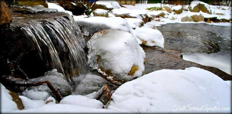 Winterized Pond